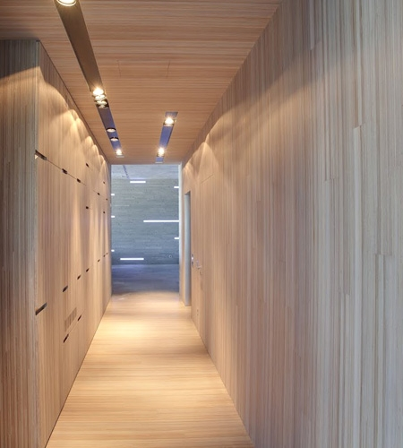 Plexwood® Professional design paneling with an upright plywood surface veneer, for interior architecture