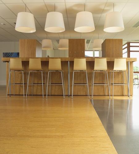 Plexwood® SHR cosy modern office cafetaria in pine re-glued and pressed plywood veneer materials