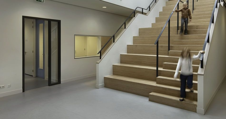 Plexwood® Van Brienenoord Public Elementary School parquet on walls and and feature staircase with seats in birch